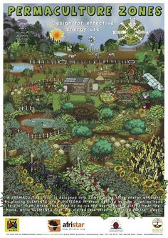 Some great permaculture posters linked to in this post - including zebras in zone 5. How cool...