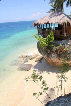 philippines travel tip Amazing Tropical Beach Oslob - Philippines - Voyage Philippines, Les Philippines, Philippines Travel, Philippines Palawan, Philippines Beaches, Places To Travel, Places To See, Travel Destinations, Food Places