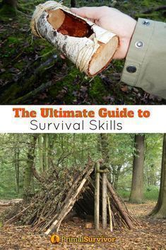 Primal Survivors guide to Survival Skills to keep you alive when shtf. We teach you essential bushcraft skills, how to start a fire, how to build a shelter, forage for wilderness food and build your own tools for hunting. #survivalskills #survival #shtf #fire #shelter #food #wilderness #primalsurvivor #foodforsurvival #bushcraftforaging #bushcraftfood #bushcraftfire #survivalhunting #bushcrafttools