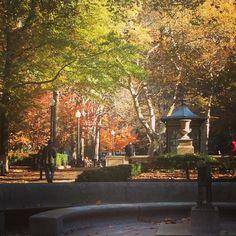 It's a beautiful fall morning in Rittenhouse!