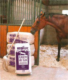 Flax Horse Bedding Review