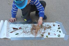 Always looking for ways to utilize the treasures the kids collect in their outdoor adventures!  This looks promising...