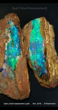 The void left by decomposed wood filled with silica dioxide some 65 million or more years ago. This bit did have the right conditions to form precious opal . Minerals And Gemstones, Crystals Minerals, Rocks And Minerals, Stones And Crystals, Gem Stones, Mineral Stone, Rocks And Gems, Natural Opal, Opal Jewelry