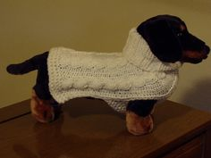 oh, my diva puppy would love this! she'd be so stylish. Animal Sweater, Real Beauty, Looking Stunning, Dog Care, Hand Knitting, Diva, Comfy, Hands, Puppies