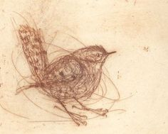 Wren Hand-Pulled Etching by Bridget Farmer Artist - traditional - artwork - Etsy