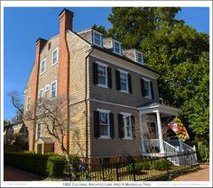 A Magnolia tree looms over the northwest corner of the 1902 Colonial Revival style Clara McNair House in Annapolis Maryland. Photograph published on April 8th 2016. To see a full size version of this photo as well as the Annapolis Experience Blog article click on the Visit button. Image and article Copyright © 2016 G J Gibson Photography LLC.