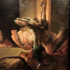 Rembrandt Harmensz van Rijn (Leiden 1606 − Amsterdam Still Life with Dead Peacocks, Oil on canvas, 145 x cm Rijksmuseum, inv. Rembrandt Art, Rembrandt Paintings, Leiden, Peacock Canvas, List Of Paintings, Art Paintings, Dutch Golden Age, Baroque Art, Dutch Painters