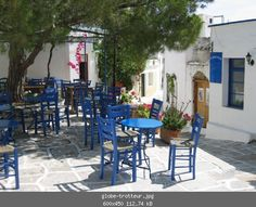 oh my goodness. This is where a bird pooped on my back. <3 