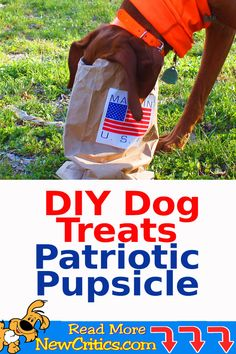 DIY Dog Treats Patriotic Pupsicle #dogs #dogrecipes #dogtreats #homemadedogtreats #4thofjuly #dogdiy Diy Dog Treats, Homemade Dog Treats, Dog Treat Recipes, Dog Food Recipes, Funny Dog Photos, Cute Funny Dogs, Cute Dog Pictures, Dog School, Buy A Dog