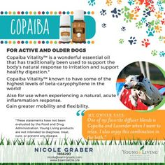 using copaiba essential oils on dogs