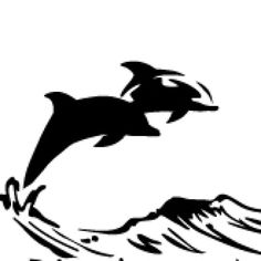 Protecting Dolphins Worldwide Since Earthday 1970