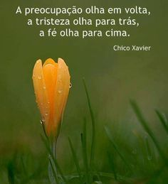 Chico Xavier. Great Sentences, Wise Mind, Special Words, Faith Hope Love, Positive Words, Psychology Facts, Learn To Love, Osho, Beauty Quotes