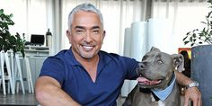 Pack leader Cesar Millan shares his most helpful dog-training tips.