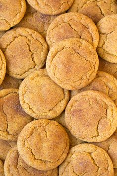 Two of the worlds best cookies in one! Pumpkin cookies meet snickerdoodles and they are out of this world delicious! You are going to want to eat all the c