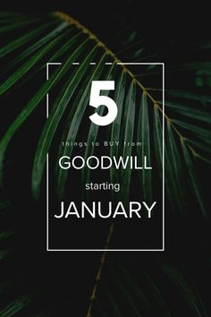 The Good Life Blog | 5 Things to Buy from Goodwill in January