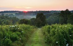 Ohio Amish Country Luxury Romantic Getaway in Holmes County near Millersburg and Berlin.  Find outdoor activities or a romantic getaway