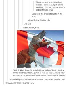 When they pointed out that their money LITERALLY smells like maple syrup. - I need to go to Canada! Sounds like an awesome country Stupid Funny, Haha Funny, Stupid Memes, Funny Memes, Hilarious, Canadian Memes, Canadian Things, Canadian Humour, Tumblr Stuff