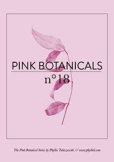 Pink Botanicals // No. 18 #design #graphicdesign #layout #editorialdesign #typography #branding #logodesign #freelancer #freelancedesigner