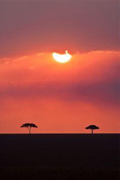 Sunset in Masai Mara game reserve, Kenya