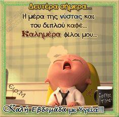 Good Night, Good Morning, Beautiful Pink Roses, Family Guy, Jokes, Teddy Bear, Animation, Mondays, Life