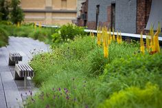 Claire Takacs recent shoot Love Garden, Garden Art, Garden Plants, Garden Design, Garden Ideas, Landscape Architecture, Landscape Design, New York Photos, Formal Gardens