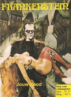 "Dutch Frankenstein comic ""for adults"" Horror Comics, Horror Art, Horror Films, Pulp Fiction Book, Halloween Illustration, Classic Monsters, Vintage Horror, Science Fiction Art, Pulp Art"