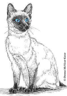 Siamese Cat Ink Drawing Embellished MiniPrint.