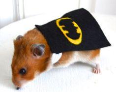 Batman costume hamster / guinea pig / chinchilla / bunny rabbit. Pet Halloween costumes by Marmota Café.