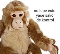 Bts Funny, Haha Funny, Funny Reaction Pictures, Funny Pictures, Mundo Meme, Club Penguin, Meme Stickers, Spanish Memes, Meme Faces