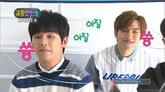 This is normal... i guess... #infiniteH #hoya #dongwoo #idiots