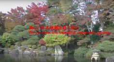 美しい日本庭園に行ってみた。We've seen the beautiful Japanese garden.I am lucky man かね...
