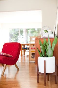 Giveaway   Mid-century modern planter with Modernica