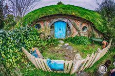 Hobbit Holes, Hobbiton, New Zealand.  #lotr #travel