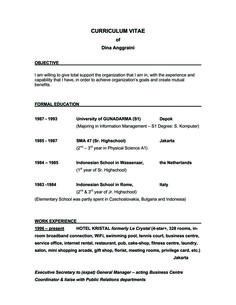 Good Objectives For Resumes Inspiration Sample Resume Objective Statements General  Invoice  Pinterest Inspiration