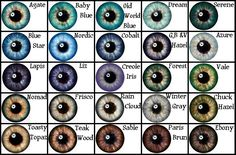 Eye Color Chart, very similar to supernovas>>> It can help you describe your character when writing, too! Book Writing Tips, Writing Help, Writing Prompts, Essay Writing, Writing Ideas, Blue Eye Color, Human Eye, Art Tips, Drawing Tips