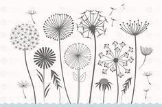 dandelion flower clipart - Illustrations - 2