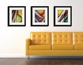 Modern Art set of 3 Photographs colorful abstract prints gold red teal geometric shapes circles vintage bus rust contemporary home decor Thrifty Decor, Diy Home Decor, Yellow Couch, Contemporary Home Decor, Modern Art, Affordable Home Decor, Sweet Home, Photographs, House Design