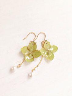アクセサリー:Dried hydrangea earrings