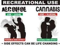 Výsledek obrázku pro Alkohol vs Marihuana