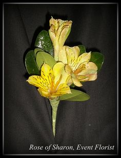 Alstroemeria boutonniere (available in white and hot pink)