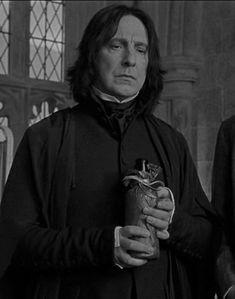 Draco, Professor Severus Snape, Harry Potter Severus, Alan Rickman Severus Snape, Severus Rogue, Harry Potter Anime, Harry Potter Characters, Harry Potter World, Slytherin
