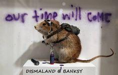 BANKSY -DISMALAND