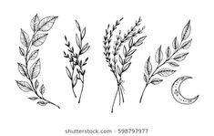 Find Hand Sketched Vector Vintage Elements Laurels stock images in HD and millions of other royalty-free stock photos, illustrations and vectors in the Shutterstock collection. Botanisches Tattoo, Wild Tattoo, Poke Tattoo, Piercing Tattoo, Piercings, Black Ink Tattoos, Mini Tattoos, Flower Tattoos, Small Tattoos