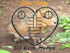 Mara Silence (Kronomash) (Bliss VS Carnage) - DJ Kronotrope