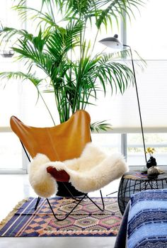 Chair, plant, lamp, sitting corner. by window and fireplace.