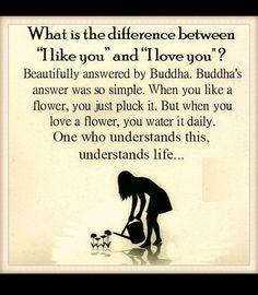 #buddha #mindfulness