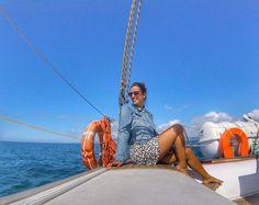 Como eu queria ! Tem post novo no blog com passeio para ver os  com a @vertigem_azul link na bio! . . . #boatlife #boat  #golfinhos #dolphins  #wanderlust #weekend #lisbon  #portugal #visitportugal  #summer #travel #travelblogger #lisboa #vemparaportugal #setubal #luliemportugal @visit_setubal  #arrabida #beach #sea #bluesky #nature #troia #comporta #boat #natureza #luliemsetubal