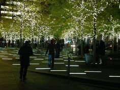 Liberty Plaza. Linear paving lights.