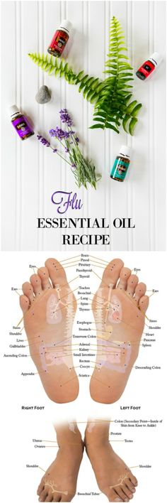 Young Living Essential Oil Recipe For The Flu.