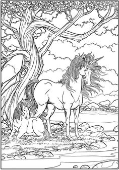Fantasy Unicorn   Adult Art Coloring Page
